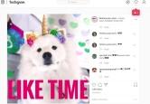 Как стать популярным: Like Time в Инстаграм