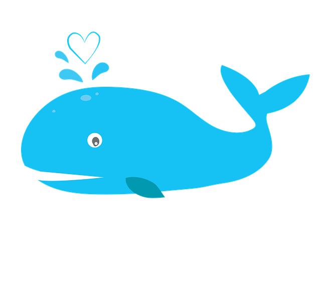 синий кит в вк